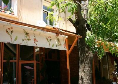 ролков сенник_дърво